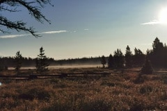 Aussicht-am-Morgen-im-Camp