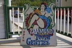 Diamant-Tooth-Gerties