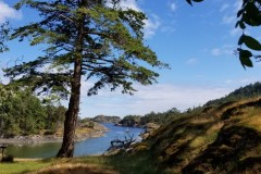 Jedediah-Island_Strait-of-Georgia_kl