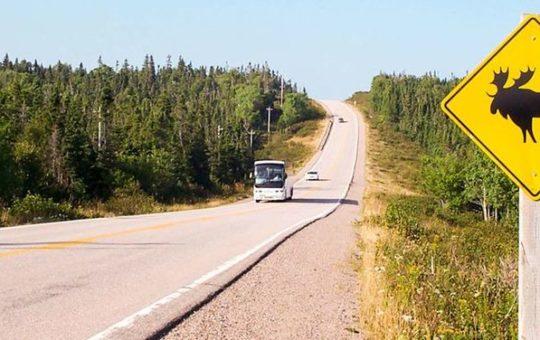 Geführte Rundreise durch Westkanada der besonderen Art
